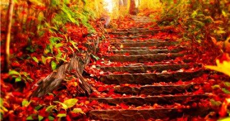 台阶风景油画图片